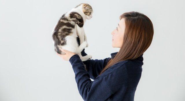 猫を見つめる女性の写真